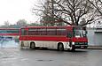 Автобус.  Подвижной состав.  Ikarus-256.  Фотогалерея.